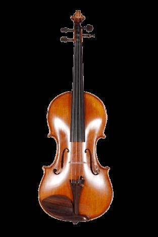 Maestro by Schira
